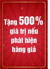 Layout Web Ben Hong Khai Truong 05