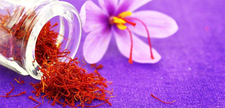 Cong Dung Cua Nhuy Hoa Nghe Tay Saffron