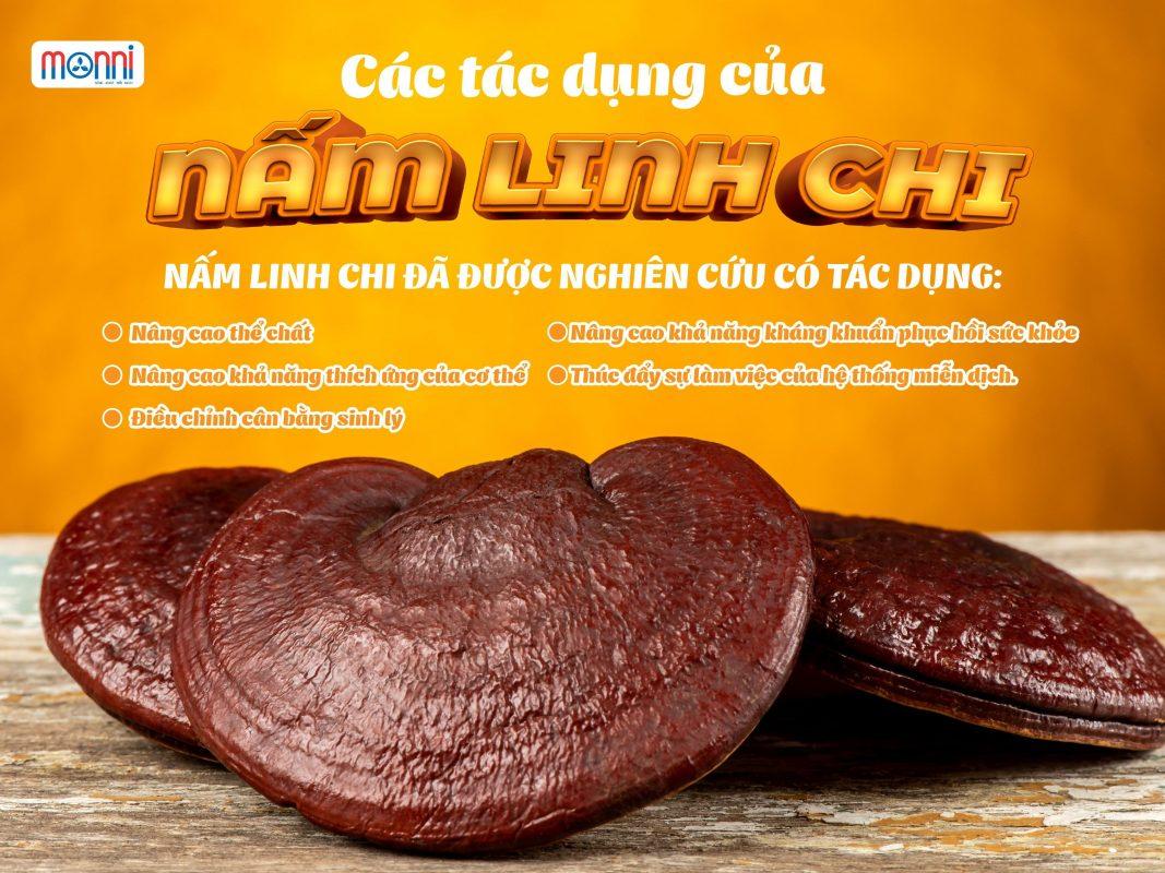 Nam Linh Chi