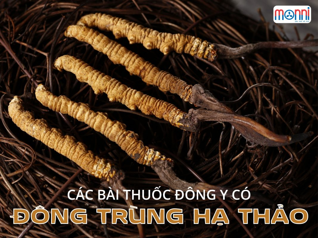 Cac Bai Thuoc Dong Y Co Dong Trung Ha Thao 02