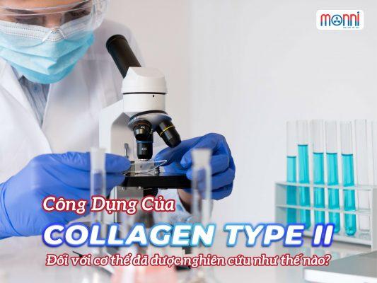 Cong Dung Cua Collagen Type Ii Doi Voi Co The Monni