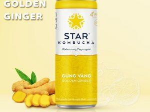 Kombucha Gung Vang Viet Nam
