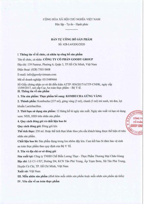 Kombucha Gung Vang Viet Nam Cb